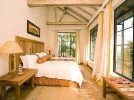 Bwindi Lodges in Uganda
