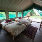 Ruzizi Tented Lodge - Akagera National Park